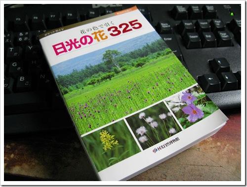 hana325