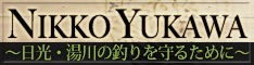 banner_s_2